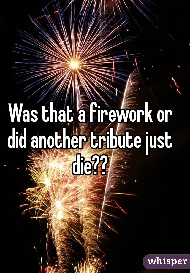 Was that a firework or did another tribute just die??