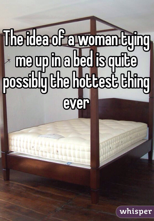 The idea of a woman tying me up in a bed is quite possibly the hottest thing ever