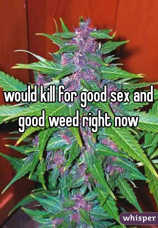 would kill for good sex and good weed right now
