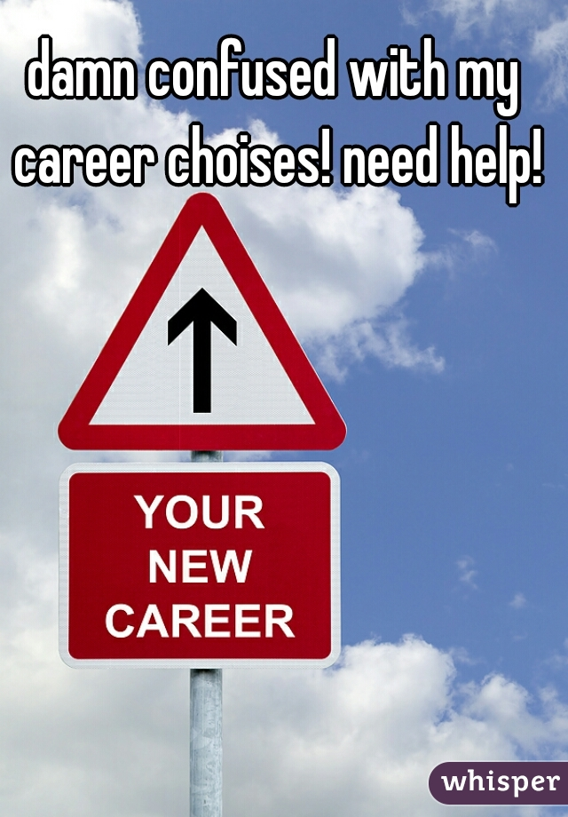 damn confused with my career choises! need help!