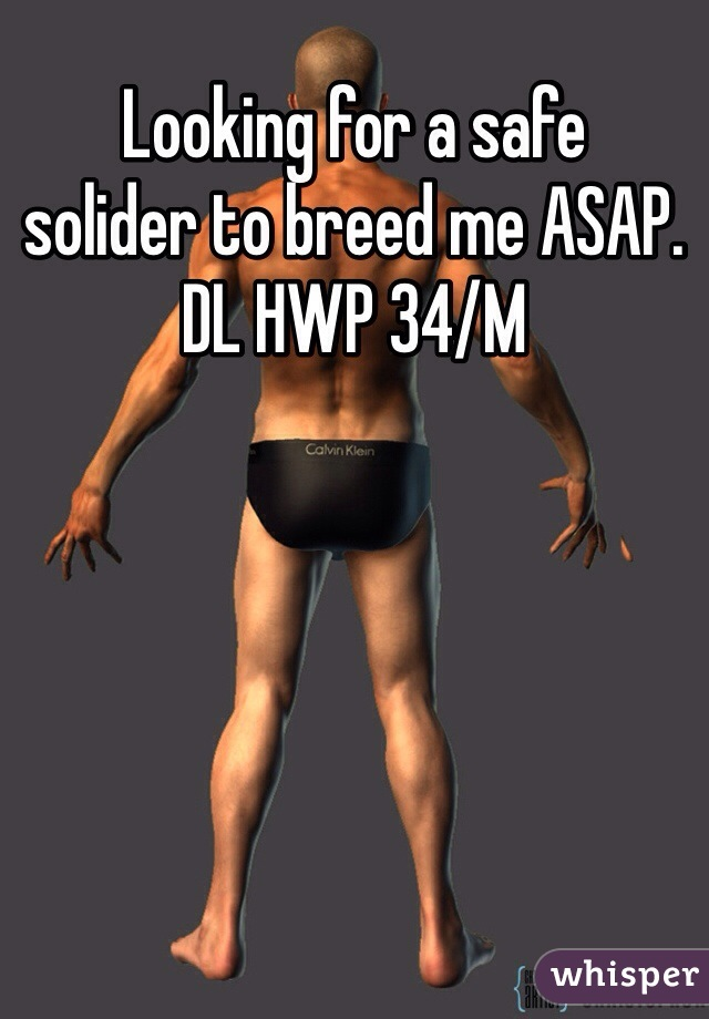 Looking for a safe  solider to breed me ASAP.  DL HWP 34/M