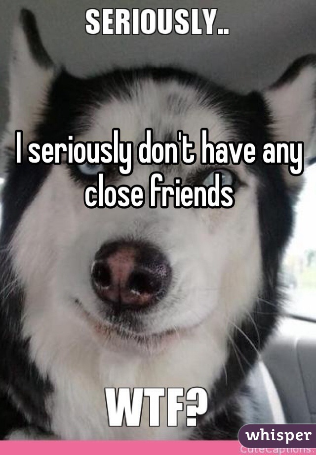 I seriously don't have any close friends
