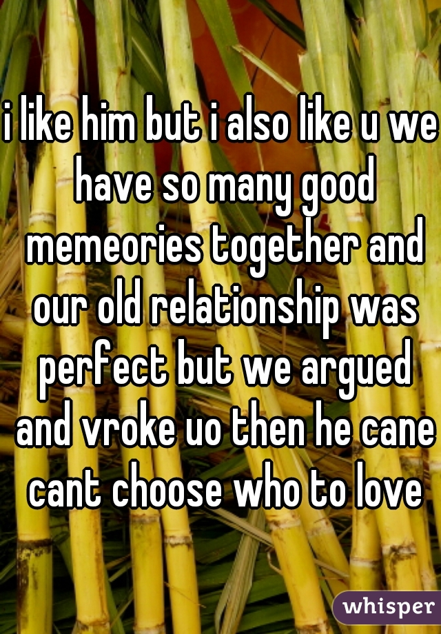 i like him but i also like u we have so many good memeories together and our old relationship was perfect but we argued and vroke uo then he cane cant choose who to love