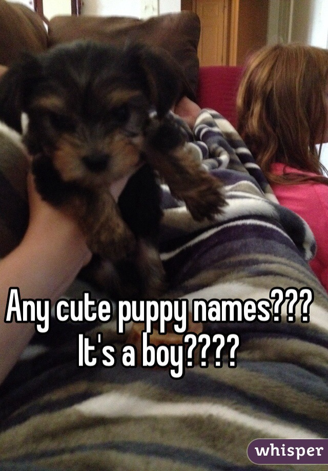 Any cute puppy names??? It's a boy????