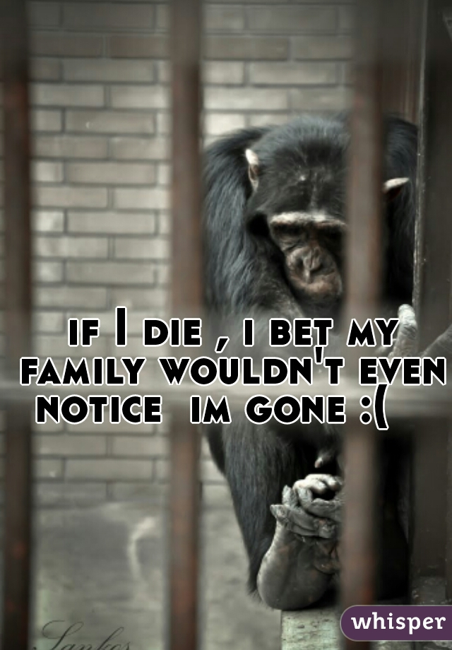 if I die , i bet my family wouldn't even notice  im gone :(