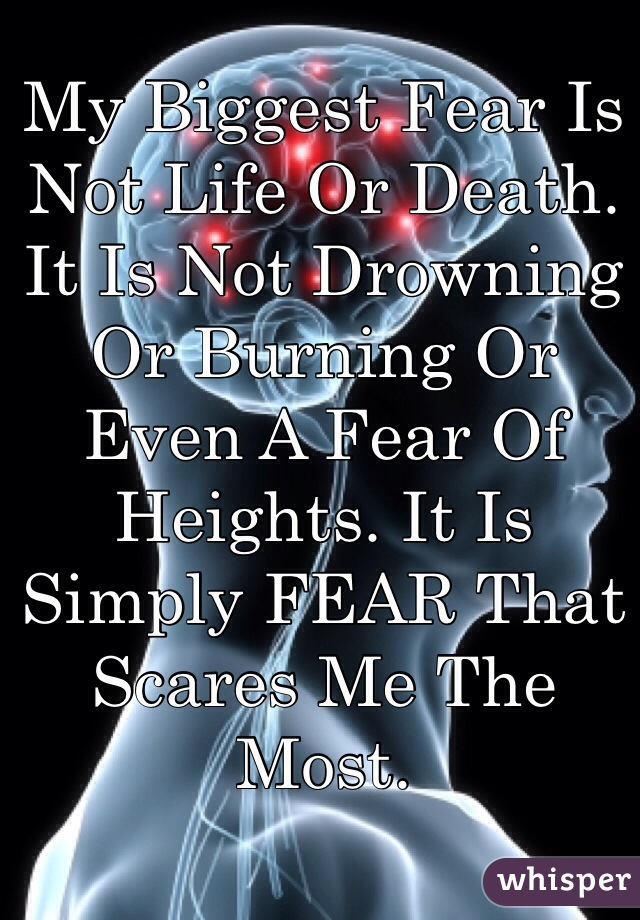 My Biggest Fear Is Not Life Or Death. It Is Not Drowning Or Burning Or Even A Fear Of Heights. It Is Simply FEAR That Scares Me The Most.