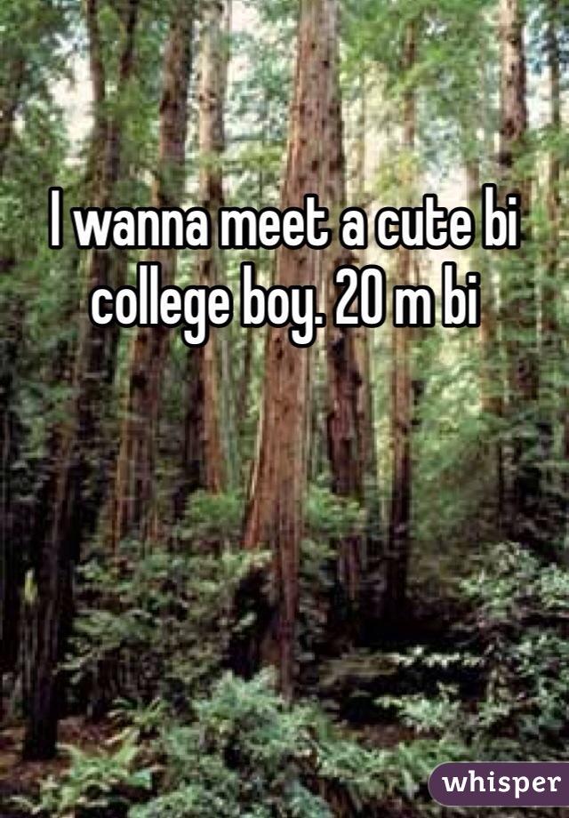 I wanna meet a cute bi college boy. 20 m bi