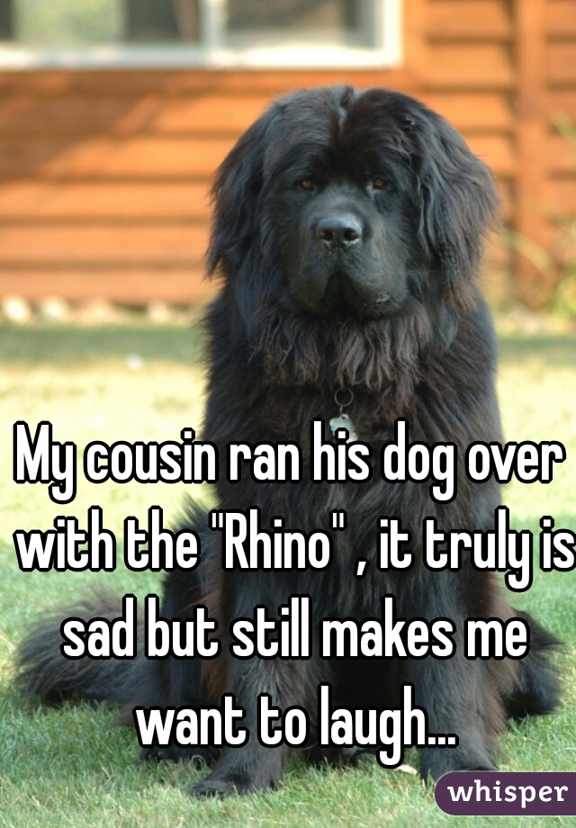 "My cousin ran his dog over with the ""Rhino"" , it truly is sad but still makes me want to laugh..."
