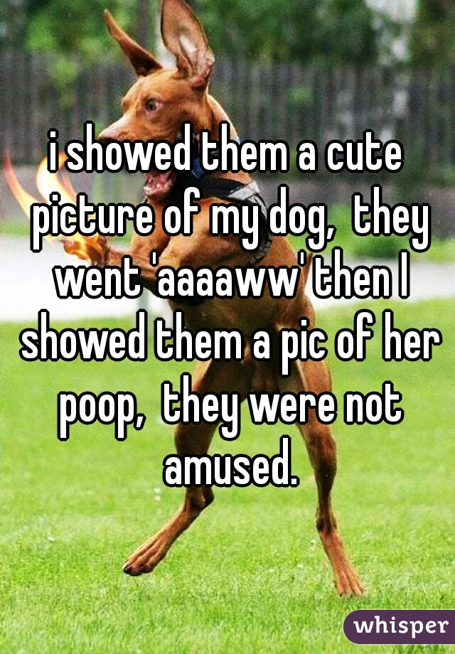 i showed them a cute picture of my dog,  they went 'aaaaww' then I showed them a pic of her poop,  they were not amused.