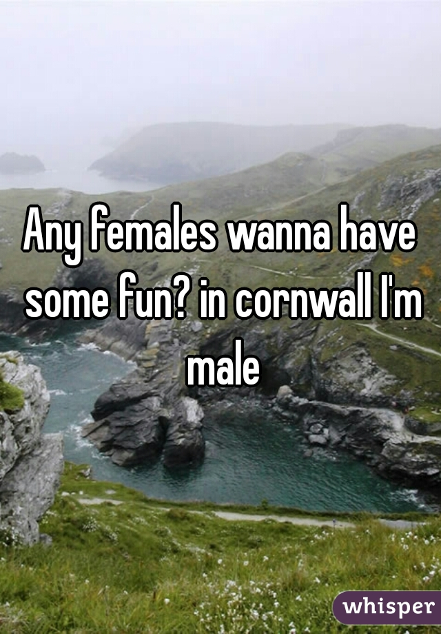 Any females wanna have some fun? in cornwall I'm male