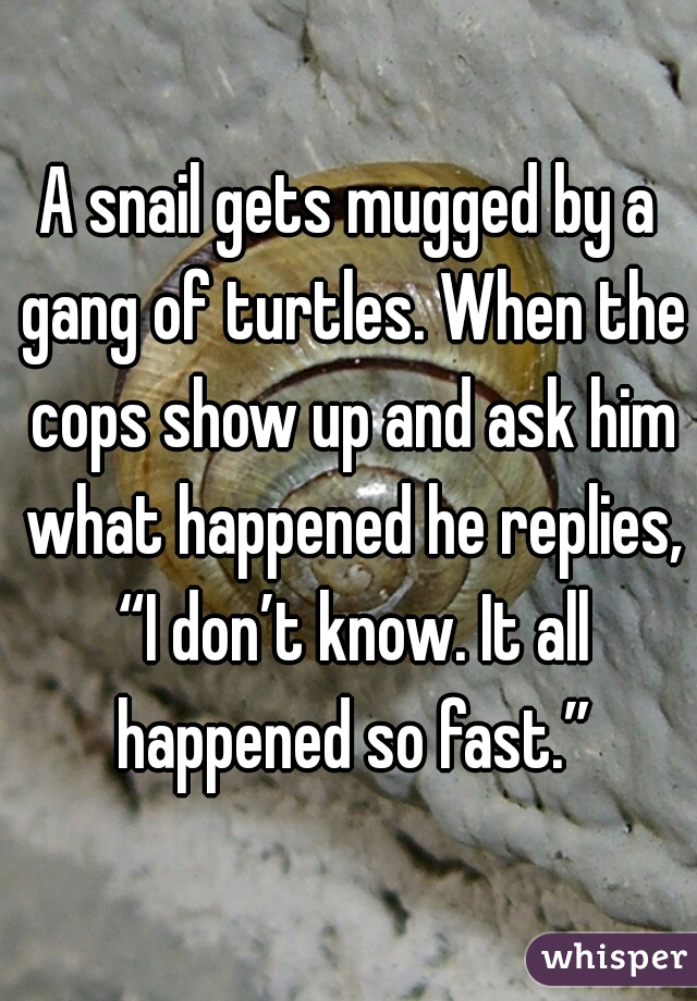 "A snail gets mugged by a gang of turtles. When the cops show up and ask him what happened he replies, ""I don't know. It all happened so fast."""
