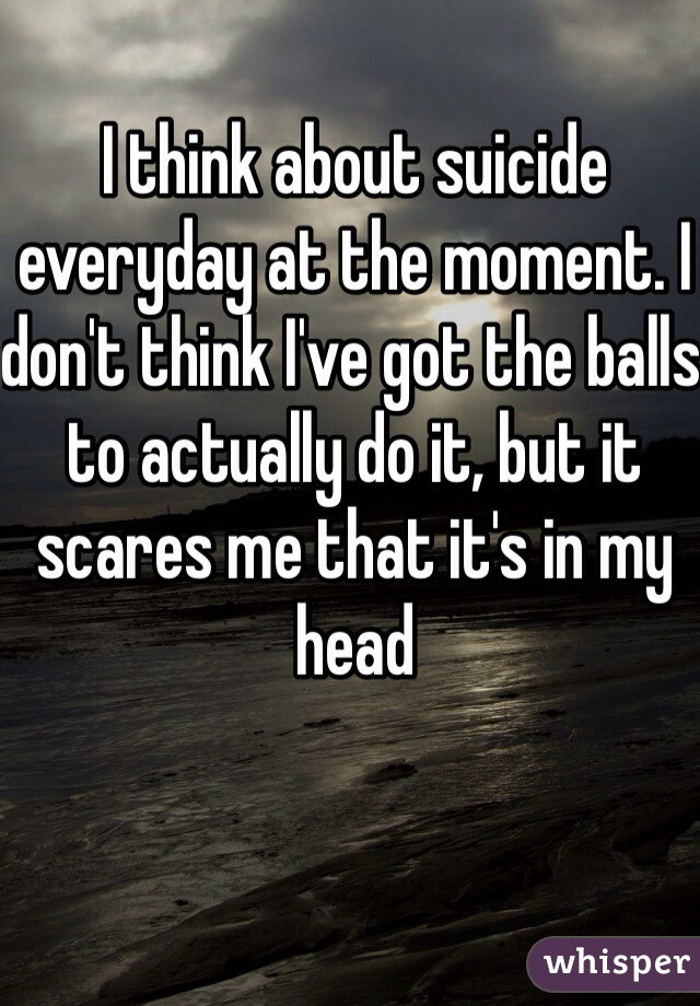 I think about suicide everyday at the moment. I don't think I've got the balls to actually do it, but it scares me that it's in my head