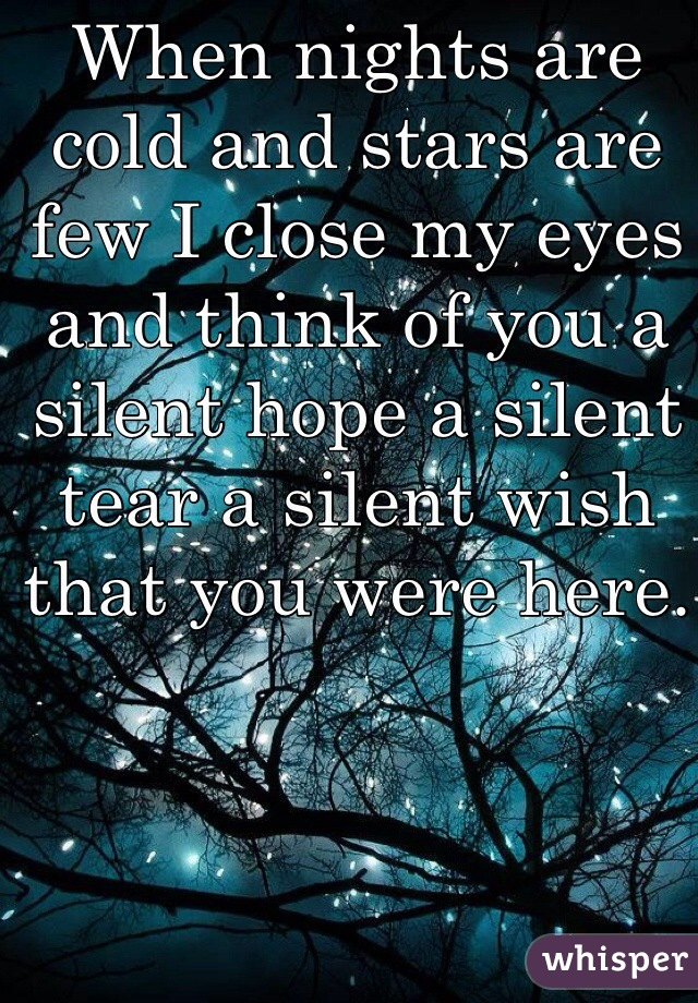 When nights are cold and stars are few I close my eyes and think of you a silent hope a silent tear a silent wish that you were here.