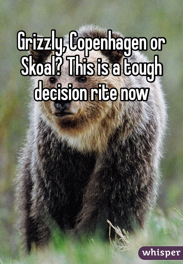 Grizzly, Copenhagen or Skoal? This is a tough decision rite now