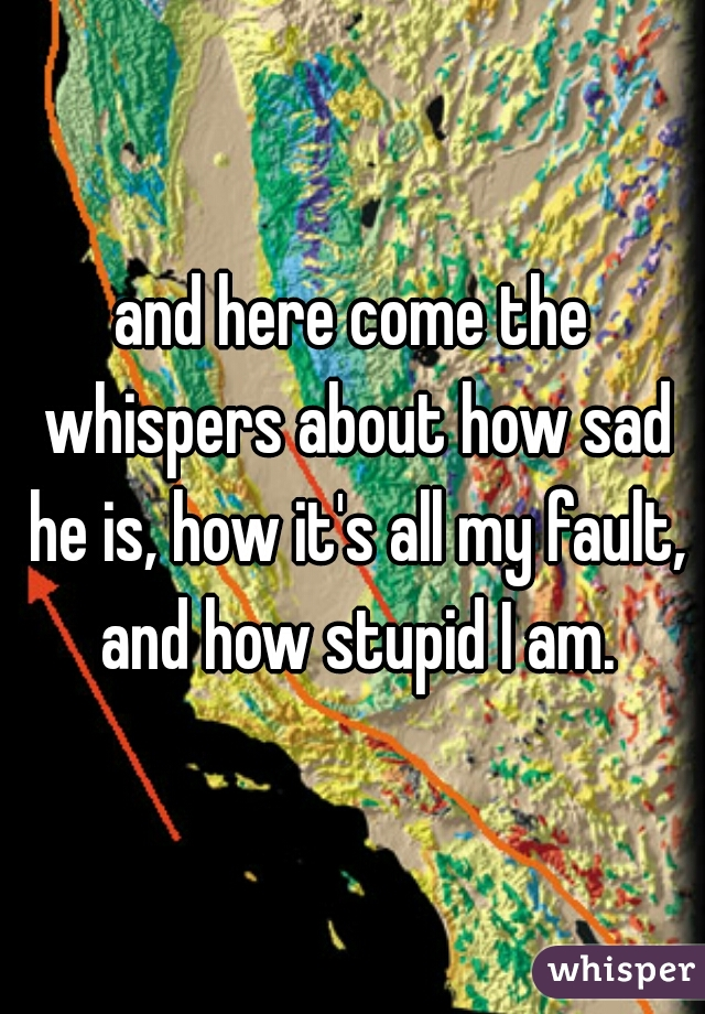 and here come the whispers about how sad he is, how it's all my fault, and how stupid I am.