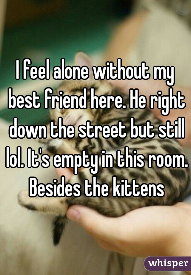I feel alone without my best friend here. He right down the street but still lol. It's empty in this room. Besides the kittens