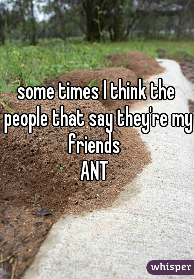 some times I think the people that say they're my friends    ANT