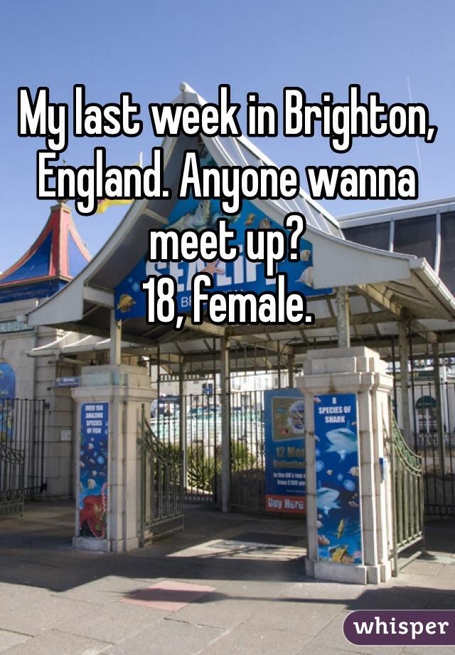 My last week in Brighton, England. Anyone wanna meet up? 18, female.