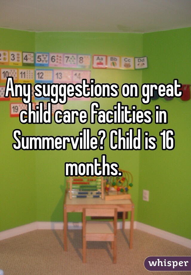Any suggestions on great child care facilities in Summerville? Child is 16 months.