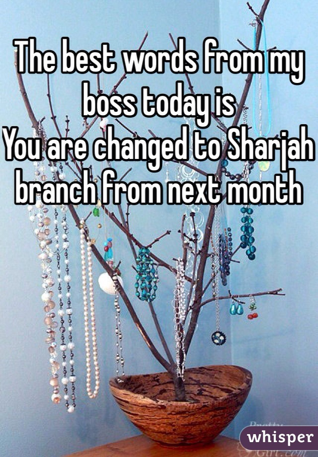 The best words from my boss today is You are changed to Sharjah branch from next month