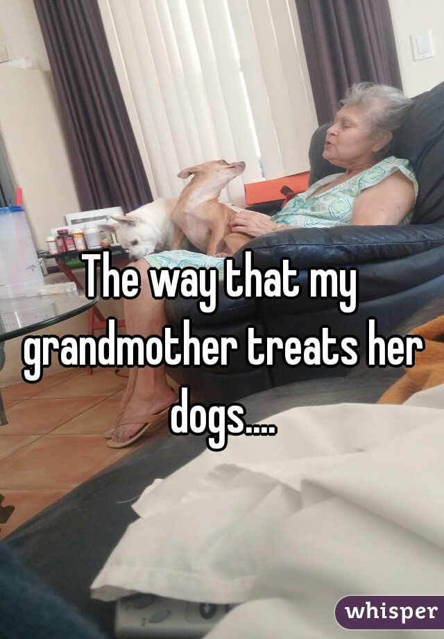 The way that my grandmother treats her dogs....