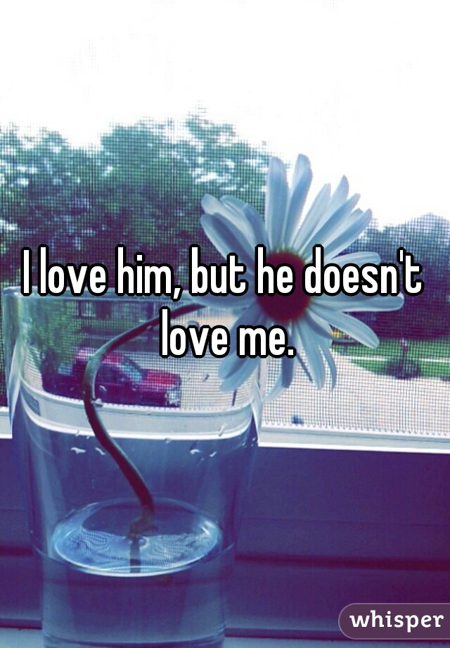 I love him, but he doesn't love me.
