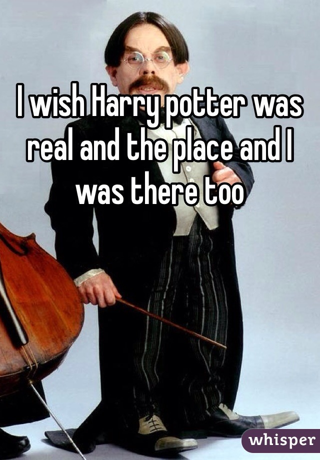 I wish Harry potter was real and the place and I was there too
