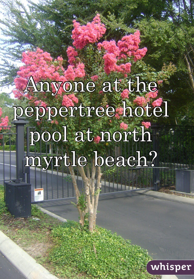 Anyone at the peppertree hotel pool at north myrtle beach?