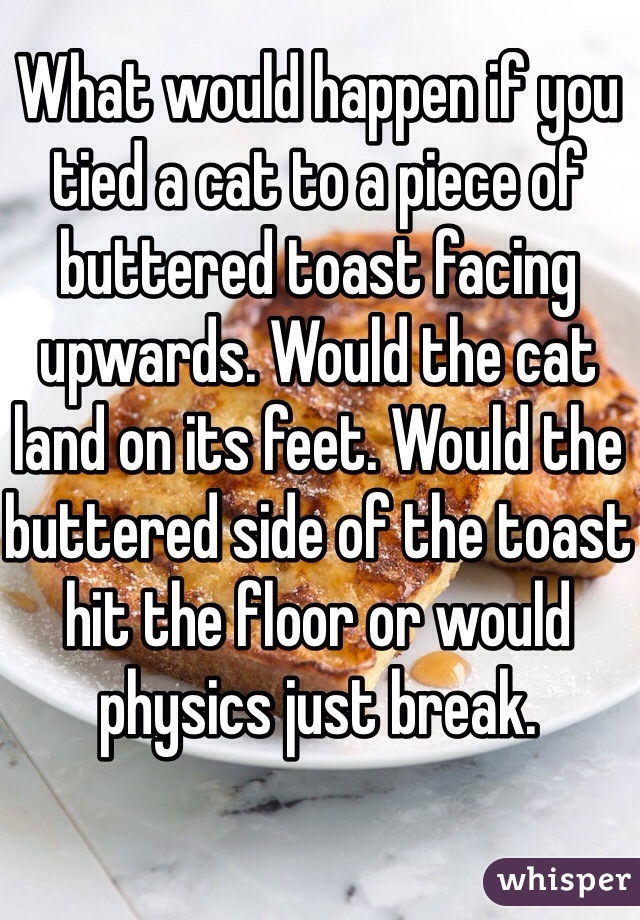 What would happen if you tied a cat to a piece of buttered toast facing upwards. Would the cat land on its feet. Would the buttered side of the toast hit the floor or would physics just break.