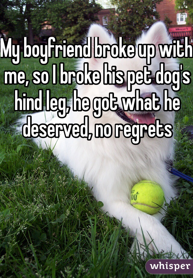 My boyfriend broke up with me, so I broke his pet dog's hind leg, he got what he deserved, no regrets