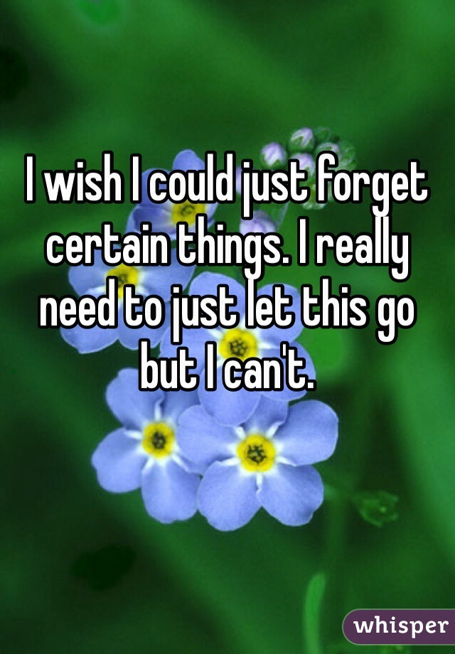I wish I could just forget certain things. I really need to just let this go but I can't.