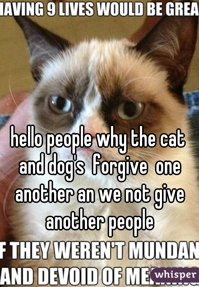 hello people why the cat and dog's  forgive  one another an we not give another people