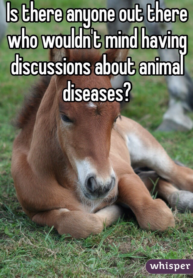 Is there anyone out there who wouldn't mind having discussions about animal diseases?