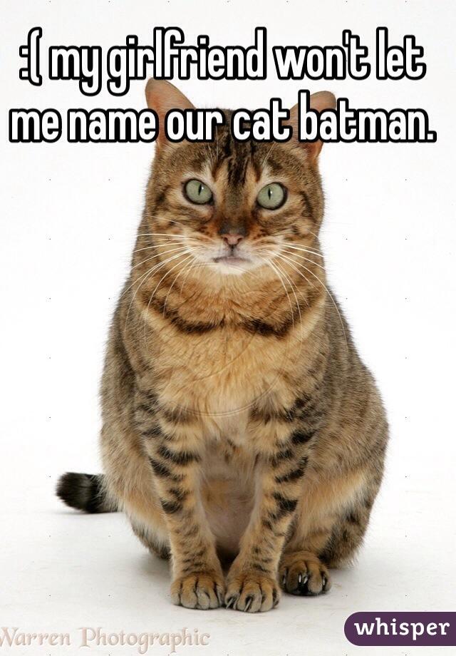 :( my girlfriend won't let me name our cat batman.