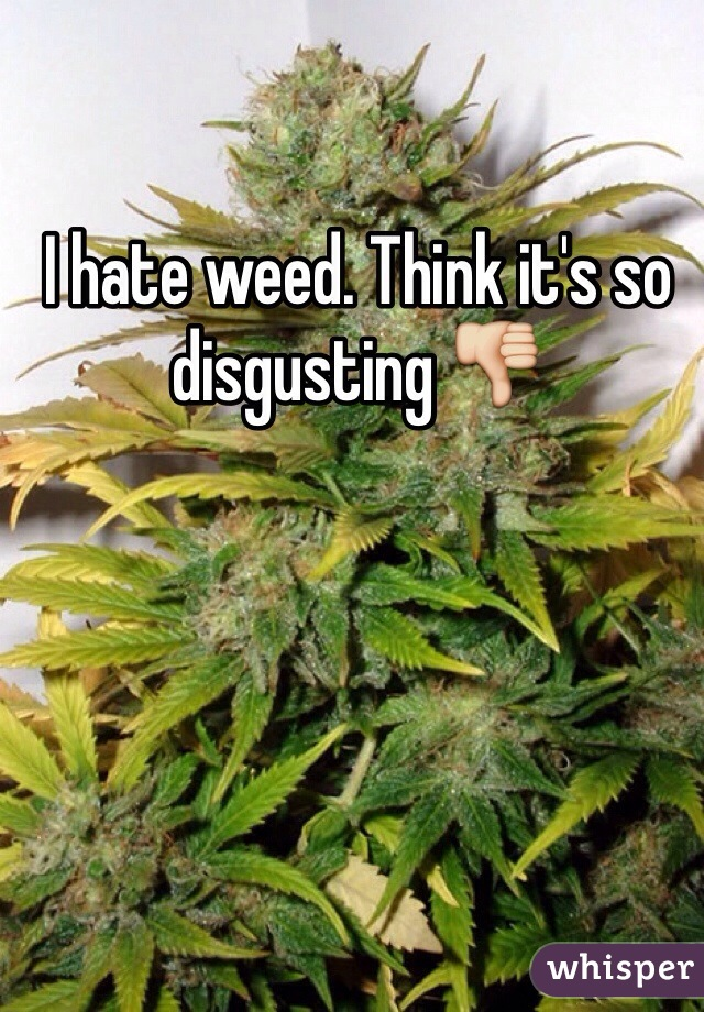 I hate weed. Think it's so disgusting 👎