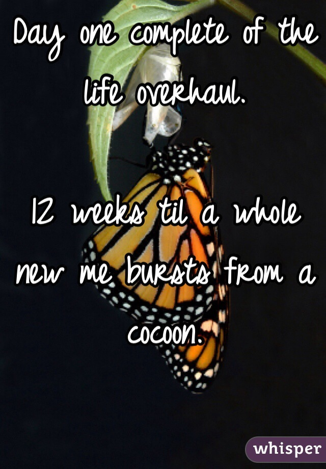 Day one complete of the life overhaul.   12 weeks til a whole new me bursts from a cocoon.