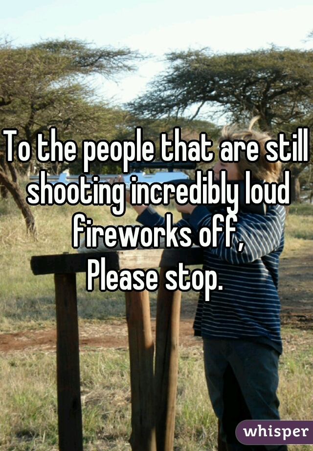 To the people that are still shooting incredibly loud fireworks off,  Please stop.