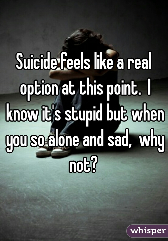 Suicide feels like a real option at this point.  I know it's stupid but when you so alone and sad,  why not?
