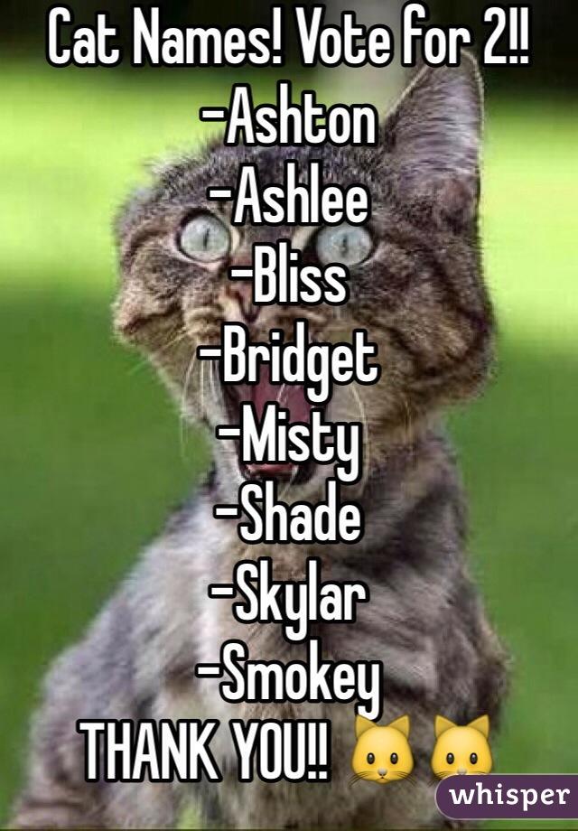 Cat Names! Vote for 2!!  -Ashton -Ashlee -Bliss -Bridget -Misty -Shade -Skylar -Smokey THANK YOU!! 🐱🐱