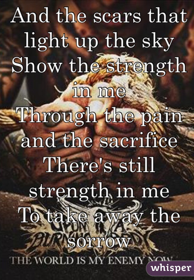 And the scars that light up the sky Show the strength in me  Through the pain and the sacrifice There's still strength in me To take away the sorrow