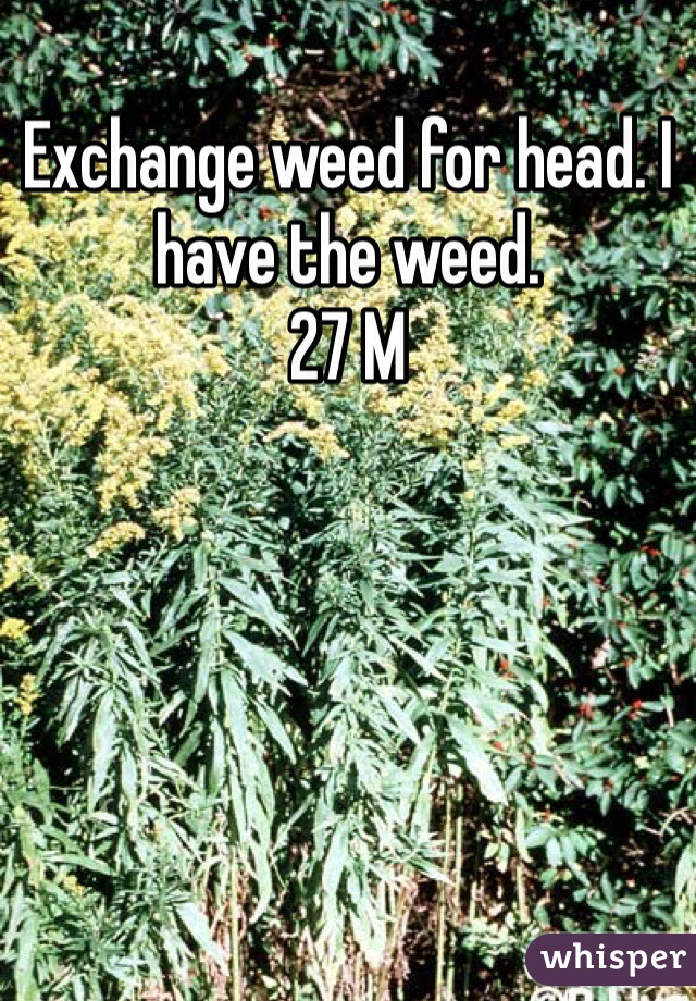 Exchange weed for head. I have the weed.  27 M