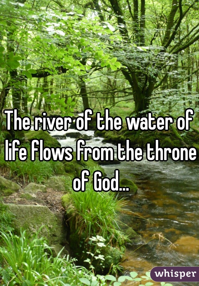 The river of the water of life flows from the throne of God...