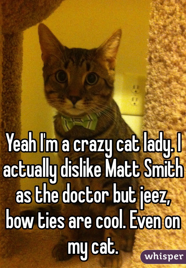 Yeah I'm a crazy cat lady. I actually dislike Matt Smith as the doctor but jeez, bow ties are cool. Even on my cat.