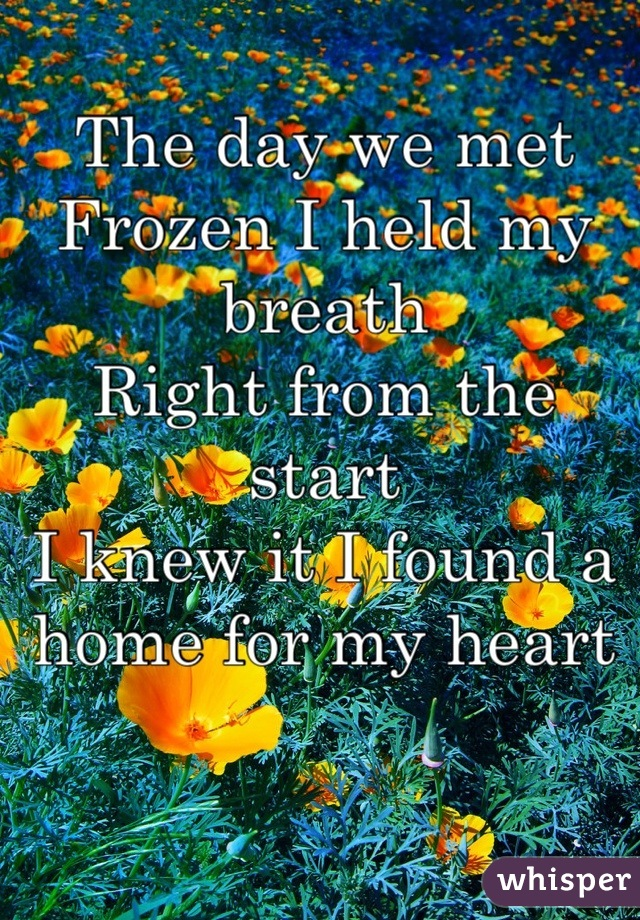The day we met Frozen I held my breath Right from the start I knew it I found a home for my heart