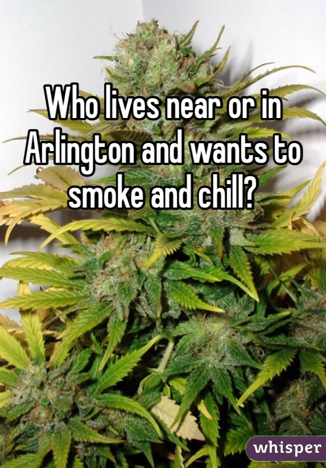 Who lives near or in Arlington and wants to smoke and chill?