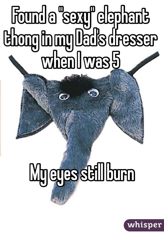 """Found a """"sexy"""" elephant thong in my Dad's dresser when I was 5       My eyes still burn"""