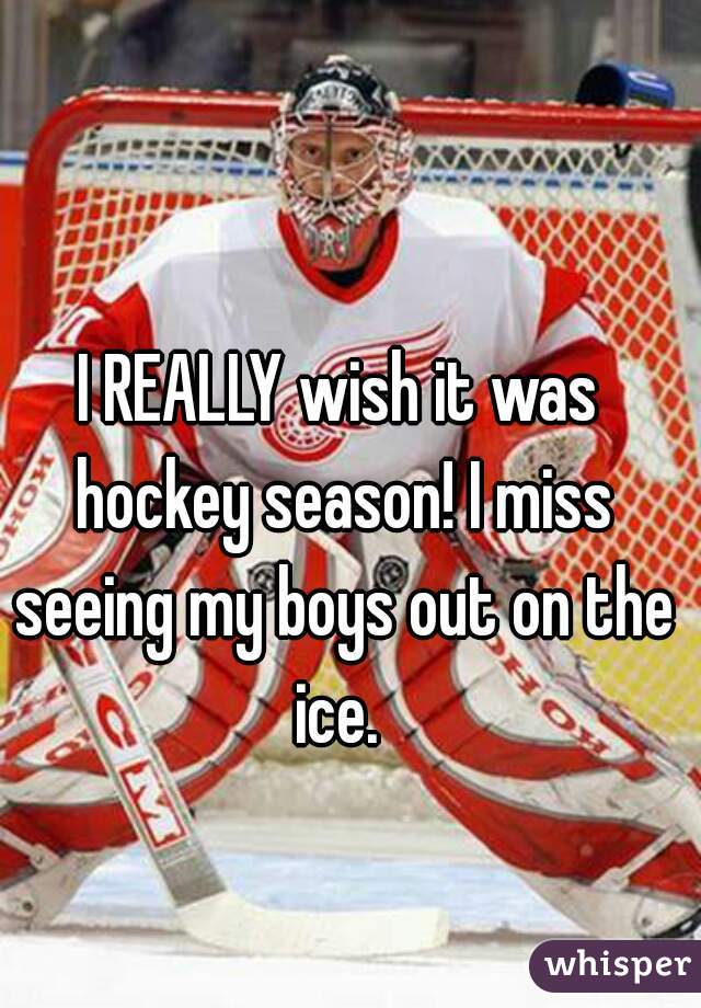 I REALLY wish it was hockey season! I miss seeing my boys out on the ice.