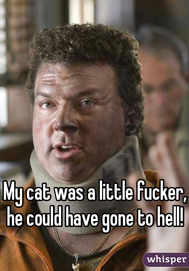 My cat was a little fucker, he could have gone to hell!