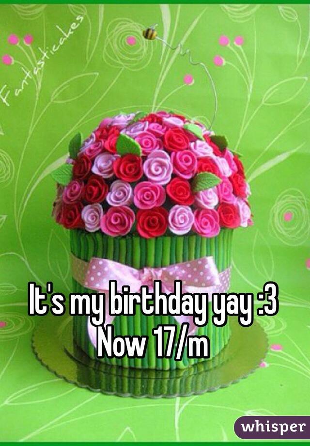 It's my birthday yay :3 Now 17/m