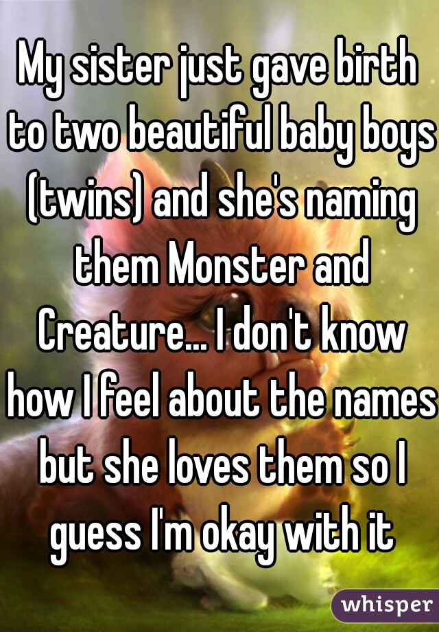 My sister just gave birth to two beautiful baby boys (twins) and she's naming them Monster and Creature... I don't know how I feel about the names but she loves them so I guess I'm okay with it
